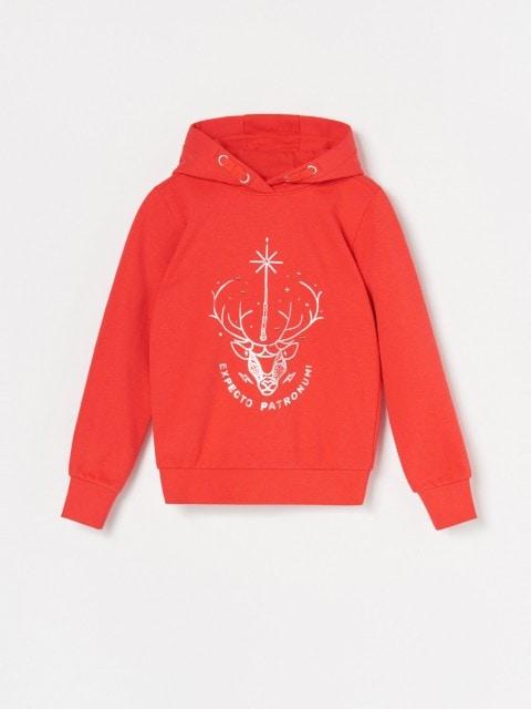 Sporta džemperis ar kapuci un Harry Potter motīvu